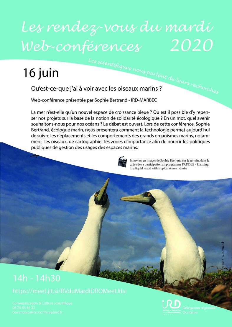 Webconférence de S. Bertrand IRD-MARBEC : Qu'est-ce-que j'ai à voir avec les oiseaux marins ?