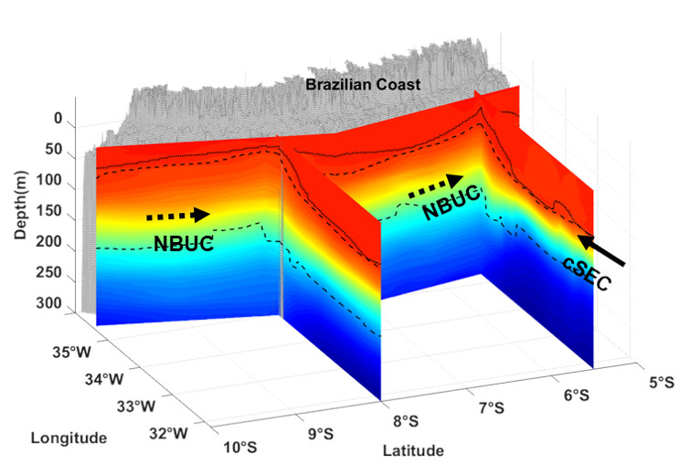 3D characterisation of the thermohaline structure in the southwestern tropical Atlantic derived from functional data analysis of in situ profiles