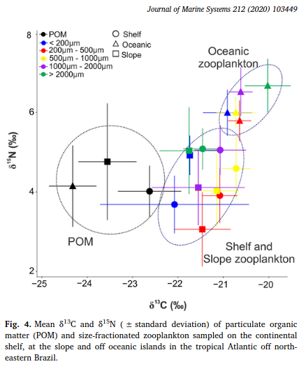 Body size and stable isotope composition of zooplankton in the western tropical Atlantic