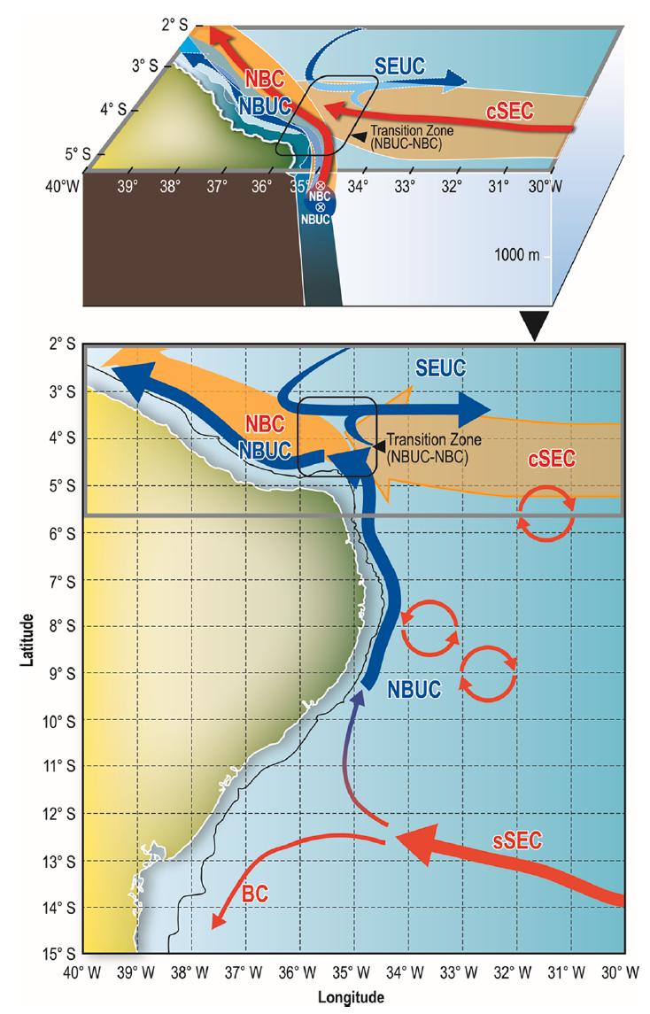 Near-surface western boundary circulation off Northeast Brazil