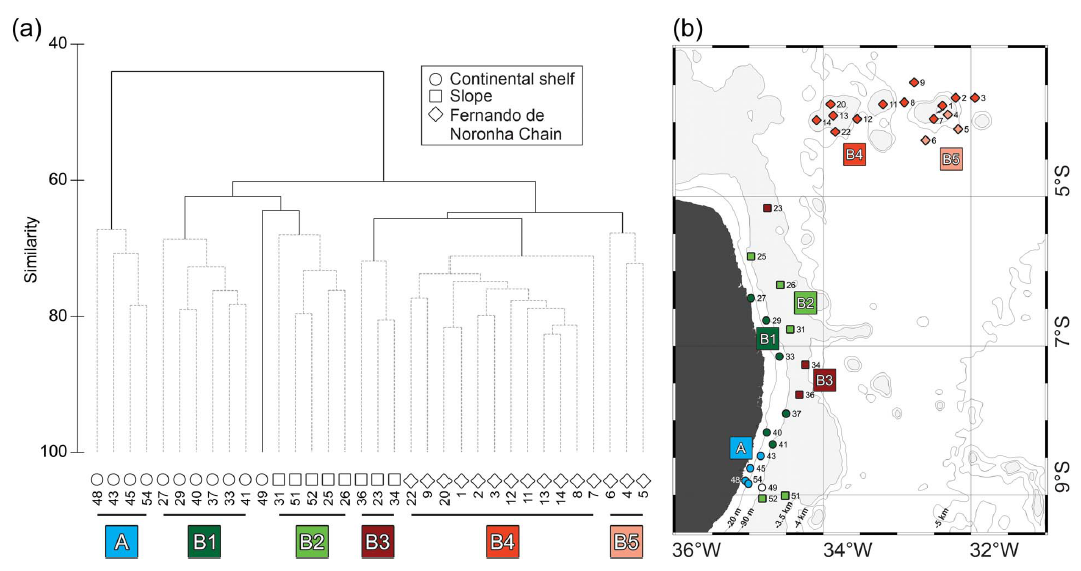Spatial patterns in planktonic cnidarian distribution in the western boundary current system of the tropical South Atlantic Ocean