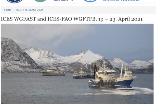 Participation of the LMI TAPIOCA to the ICES Working Group on Fisheries, Acoustics, Science and Technology (WGFAST)