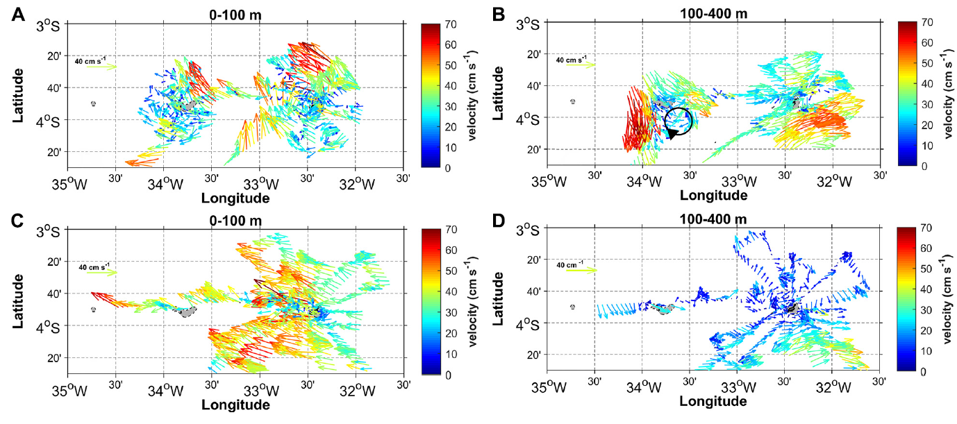 Surface circulation and vertical structure of upper ocean variability around Fernando de Noronha archipelago and Rocas atoll during spring 2015 and fall 2017