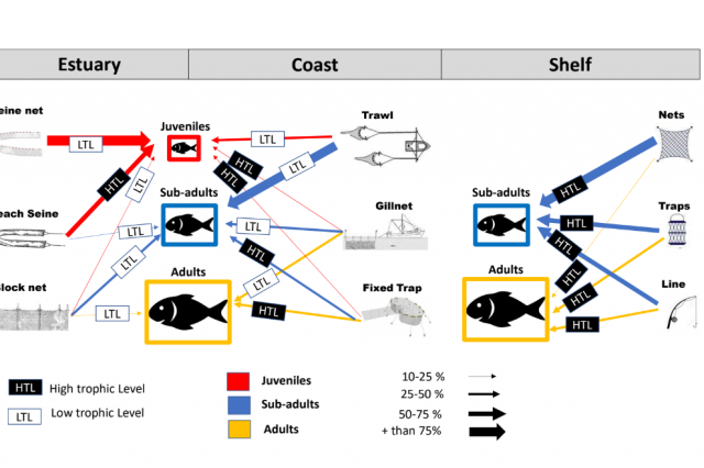 Balanced harvest as a potential management strategy for tropical small-scale fisheries