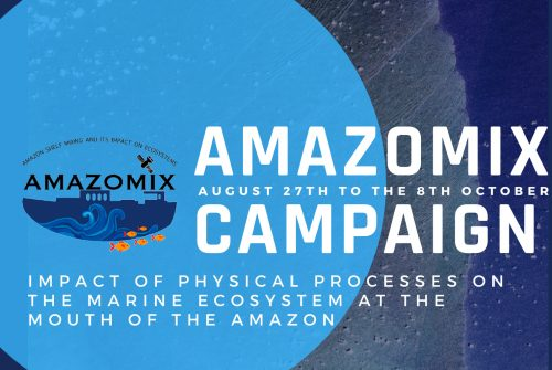 AMAZOMIX campaign: Impact of physical processes on the marine ecosystem  at the mouth of the Amazon